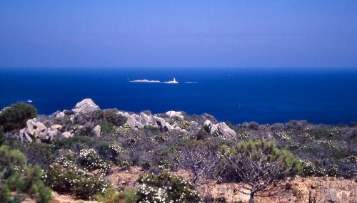 Isole Monaci 1
