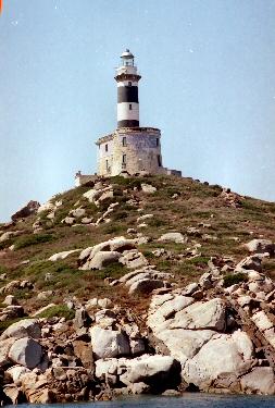 Isola dei Cavoli 1